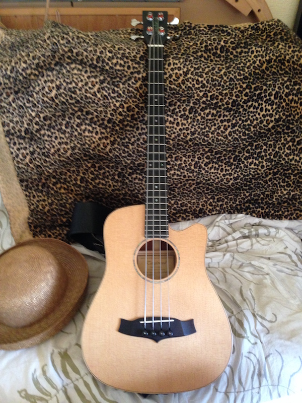 2016-05-17 Tanglewood Baby Bass new tuners flatwound strings - smaller file